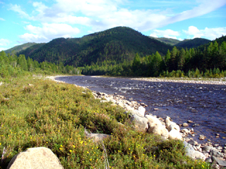 Valley of Irkut river