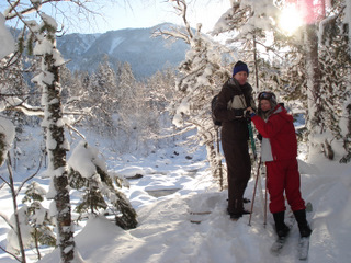 Cross country skiing in Taiga woods