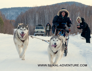 Dog sledding trip, Lake Baikal